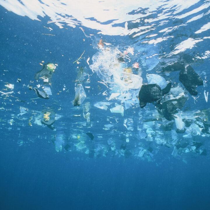 Rapporten Rätt plast på rätt plats går på djupet om plastens miljöpåverkan, och hur vi ska ta oss till en mer hållbar plastanvändning.