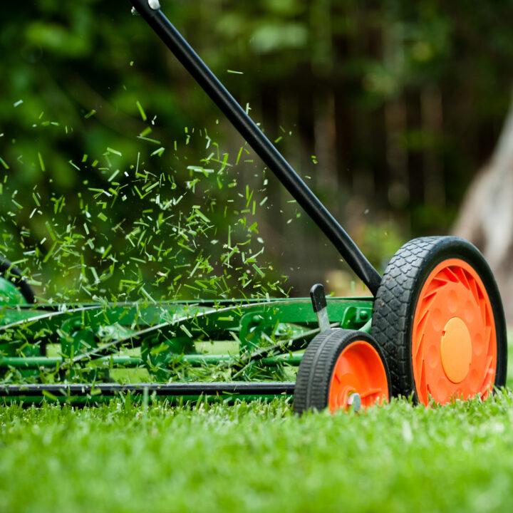 Handdriven gräsklippare