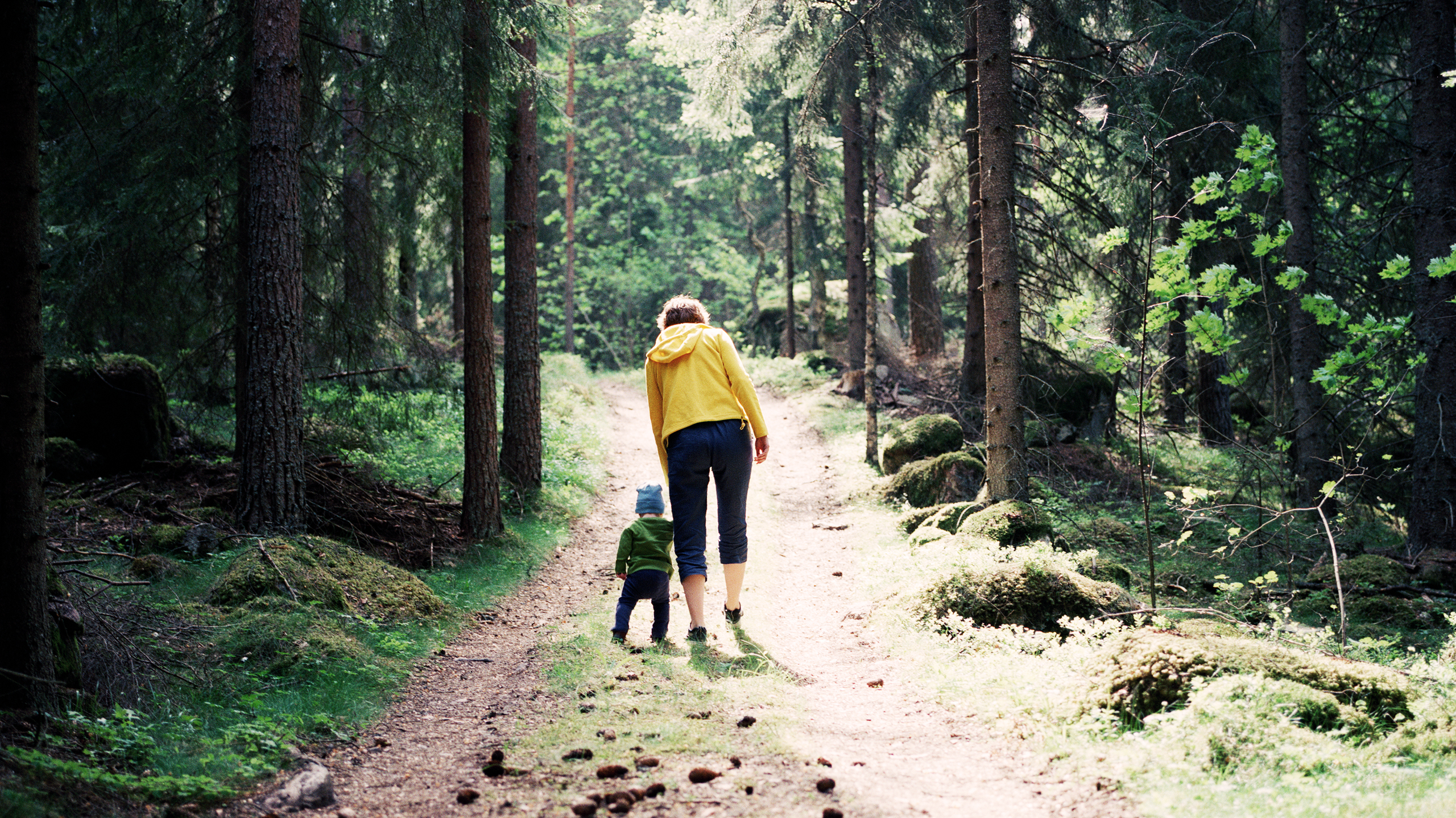 Familj på skogsstig.