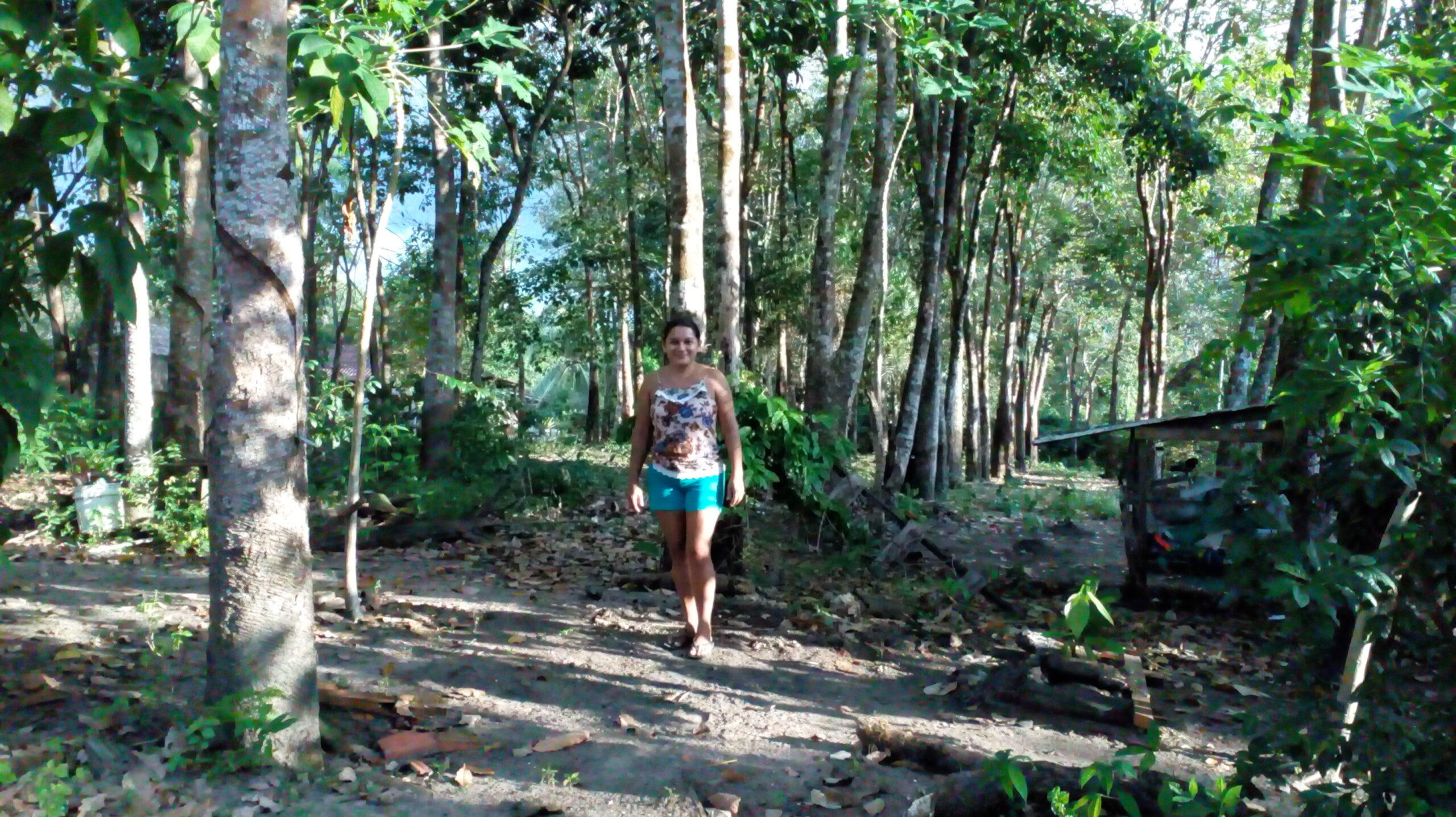 Gummitappare, Amazonas
