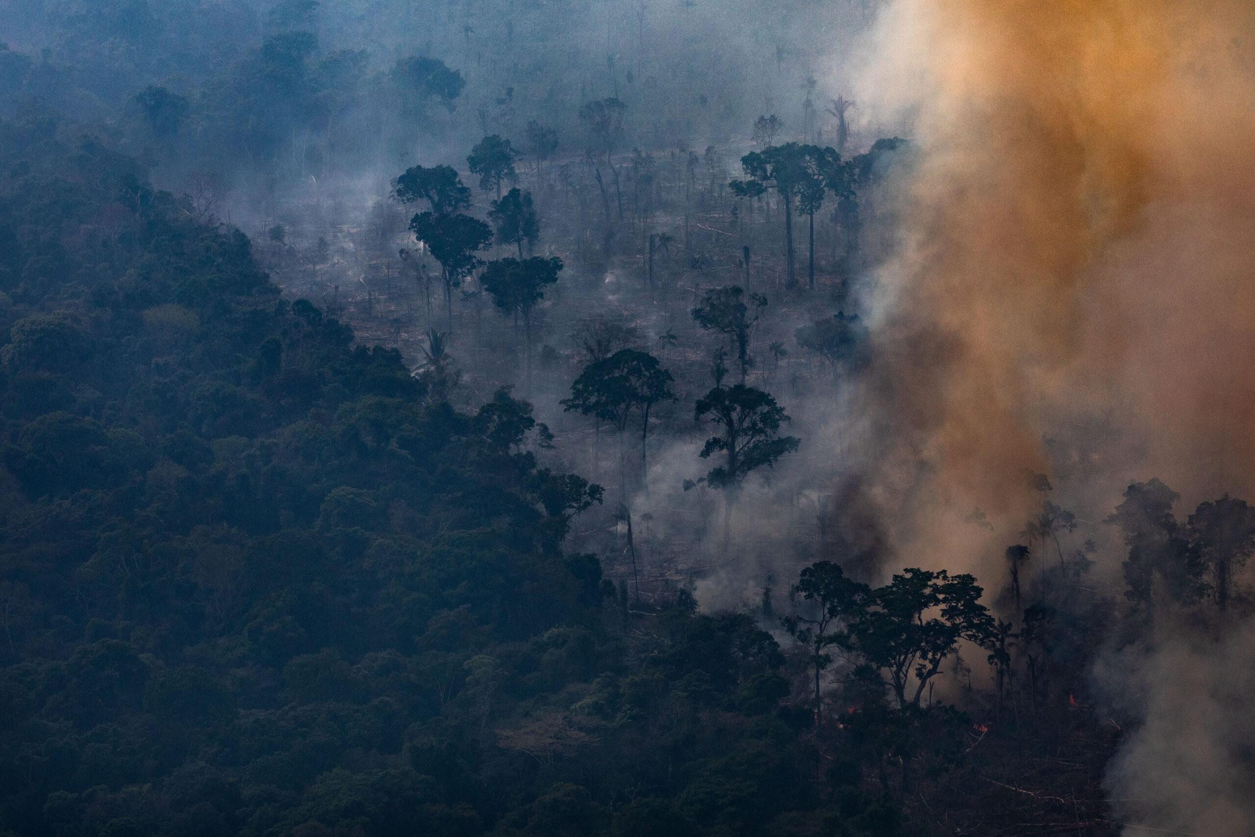 Amazonas bränder