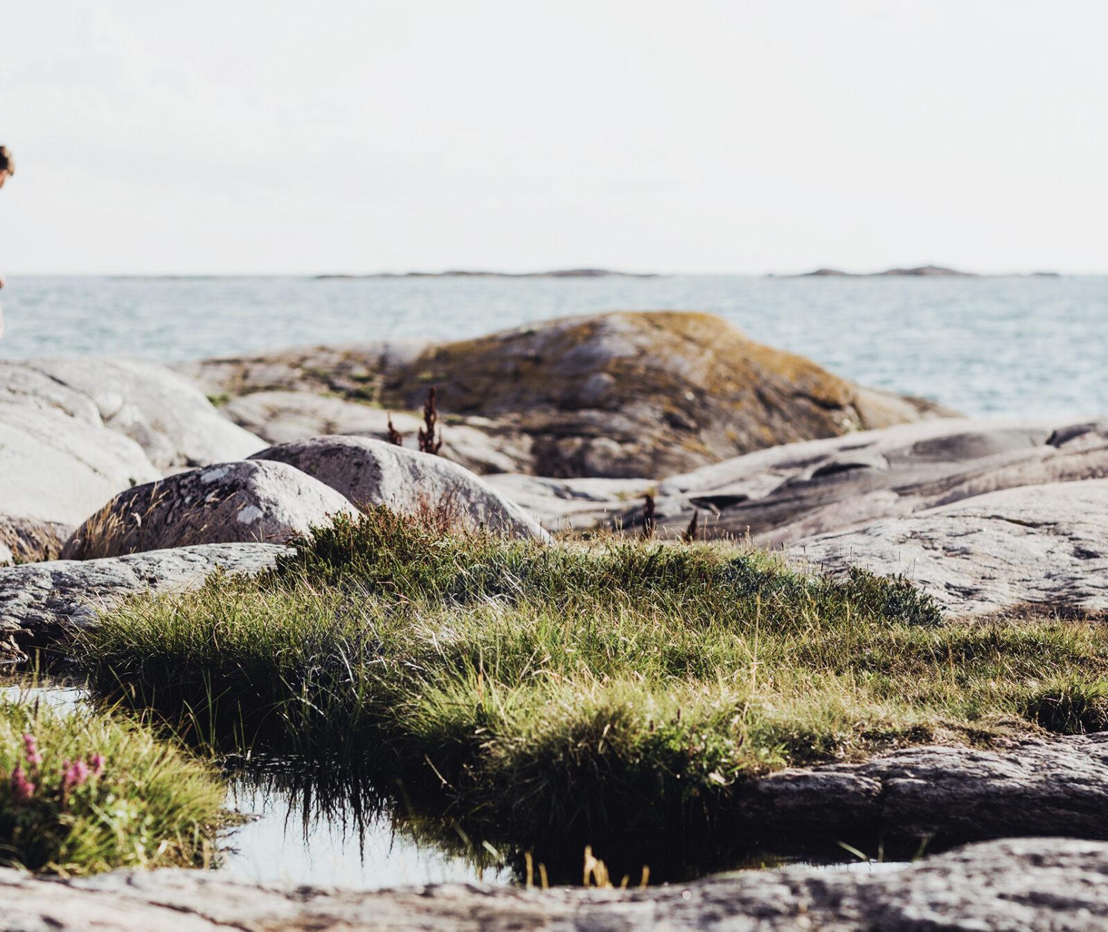 Pojke, klippor, skärgård, hav, havet, havsklippor, sommar, bad,