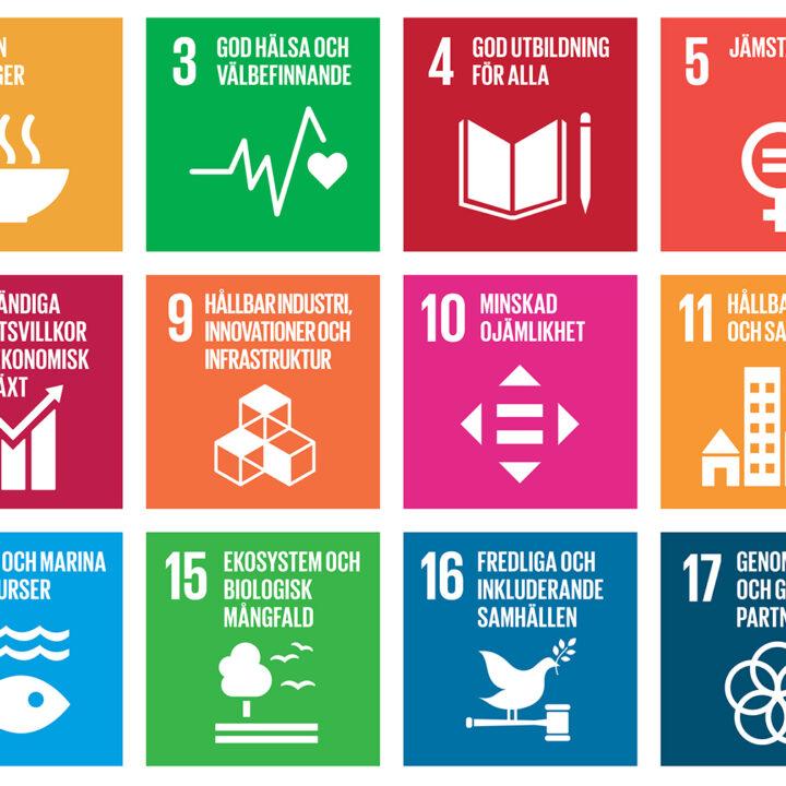SDG, Agenda 2030, Global, mål, hållbar, utveckling, utvecklingsmål, FN, fattigdom, hunger