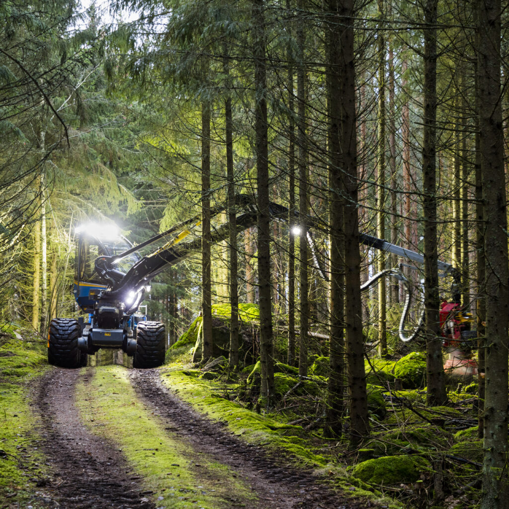 Skogsbruk och klimatet. Skogsmaskin kapar skog.