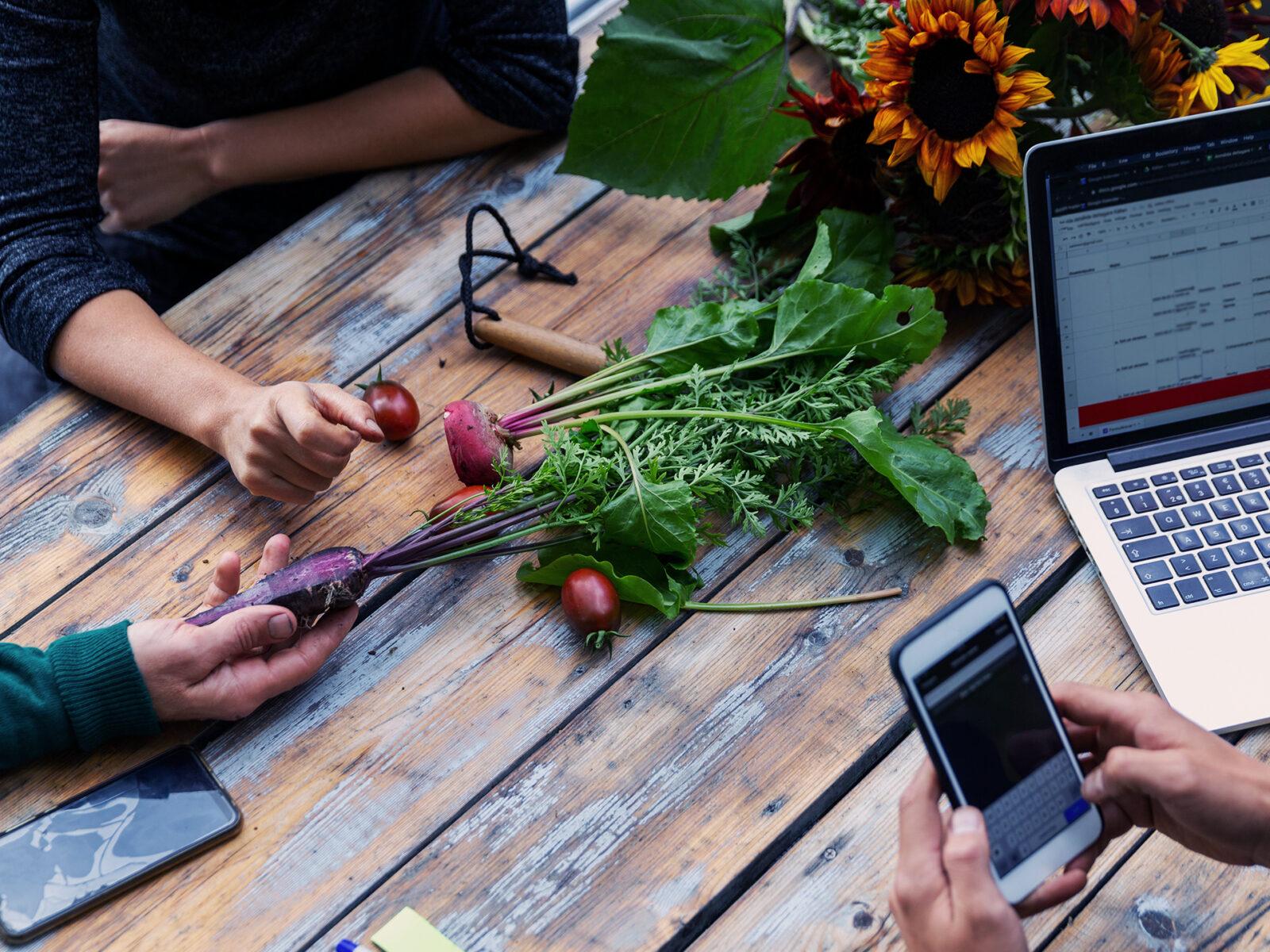 Utomhusmöte, möte, laptop, mobil, rödbeta, grönsaker, händer, hand, solros, mobiltelefon, dator,