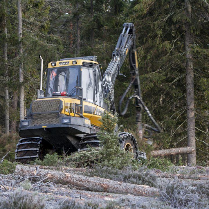 Skogsmaskin, Skogsbruk, Avverkning, Skogsavverkning, Natur, Skog