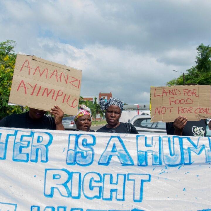 WoMin, Samarbetsorganisation, Johannesburg, Sydafrika, Kvinnor, Demonstration, Protest