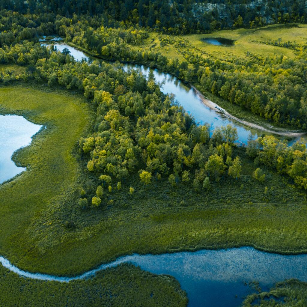 skog, å, vatten, uppifrån, slingrande, träd, natur, 1176867660