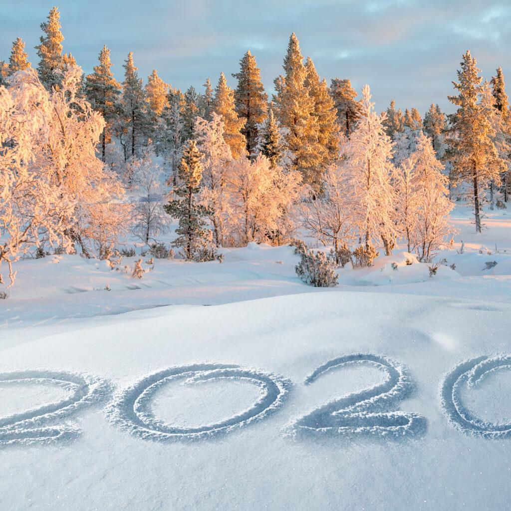 2020, snö, vinter, nyår, träd, natur, firande, fira, segrar, år, solnedgång, 1180961371