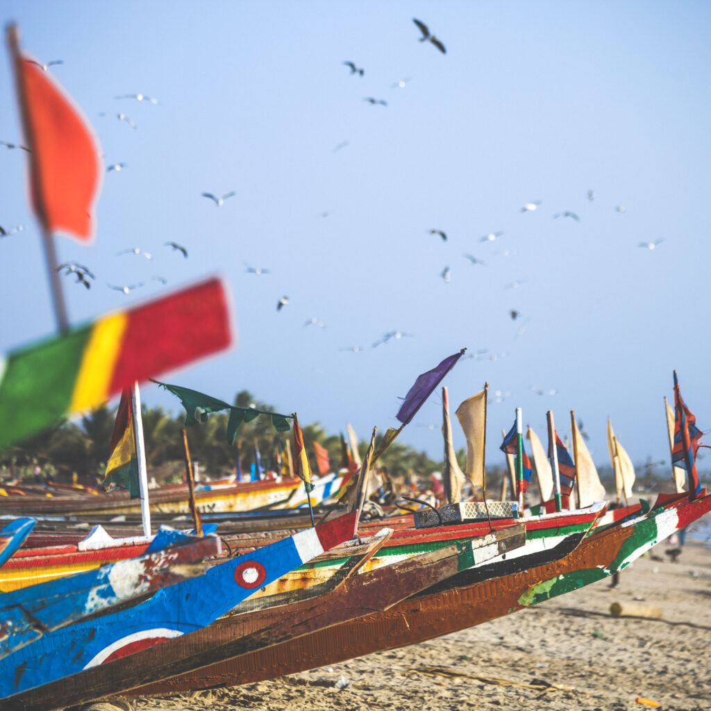 Afrika, Senegal, Båtar, Fiske, Fiskare, Småskaligt, Traditionellt, Sandstrand, Fåglar, Gambia