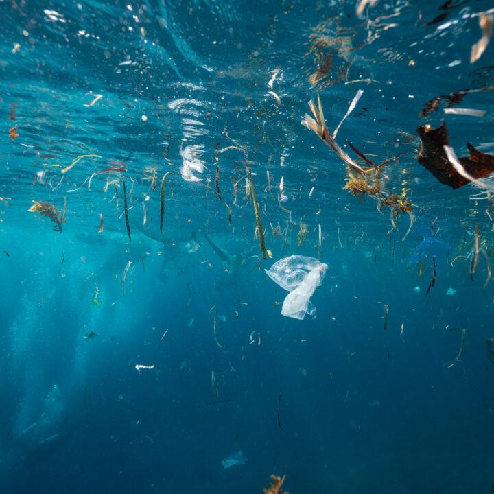 Skräp, plast, hav, förorening, pollution, plastic, hav, vatten, globala