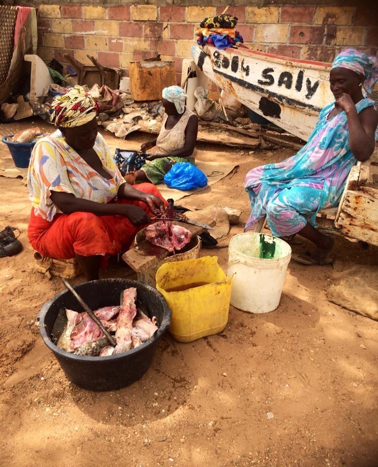 Fiske, Kvinnor, Senegal, Småskaligt, Fish traders, Kvinna