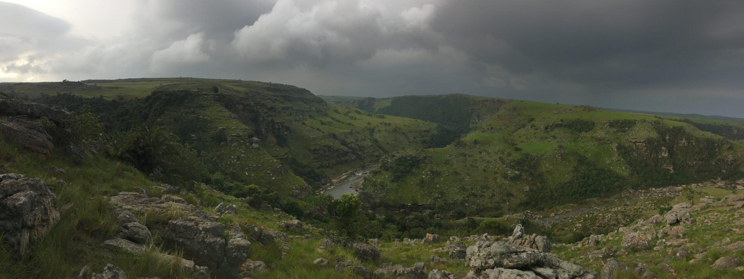 Pondoland, Sydafrika, Skog, Globala, Reportage