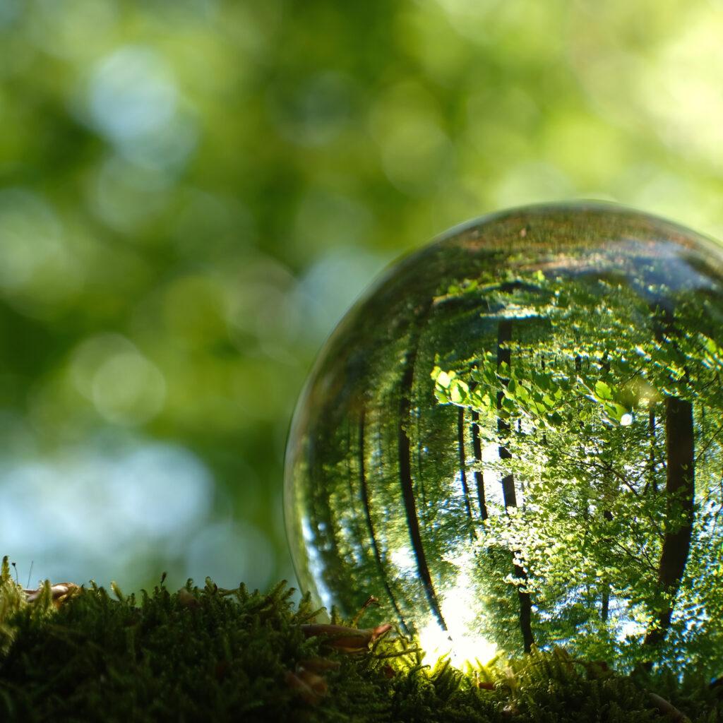 park, jord, värld, lins, jorden, ekologi, rädda, hållbar, grön, vår, grön, miljömärkning, 1221171067