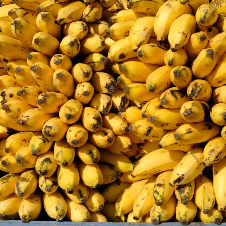 Bananer, hög, gul, affär, mogna.