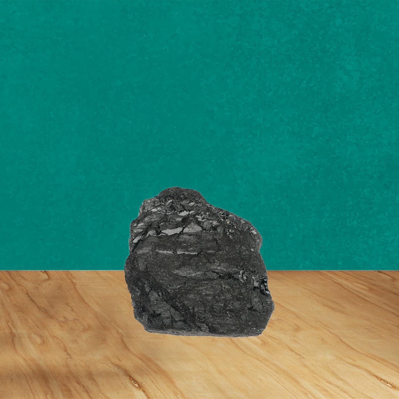 2053, bortom, fossilsamhället, museiföremål, kolbit