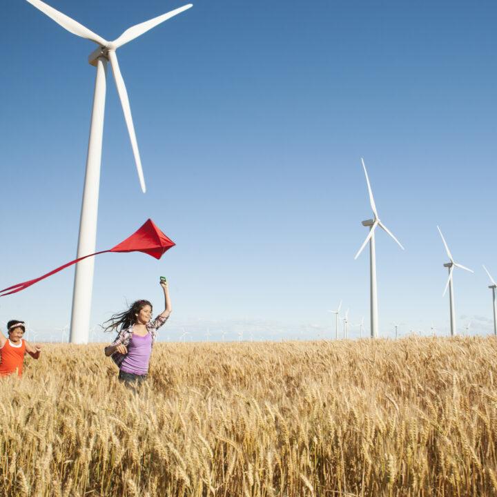 flickor, lantbruk, fält, kul, vindkraft, flygdrake, luft, innehav, lycka, samhörighet, bekymmerslös, vindkraftverk, avslappnad, klar himmel, i rad, vindkraftverk, landsbygdsscen, vete, horisontell, utomhus, dag , endast flickor, sidovy, midja upp, 10-11 år, 12-13 år, usa, oregon, wasco, minskande perspektiv, kinesisk etnicitet, thailändsk etnicitet, kaukasisk etnicitet, blandad