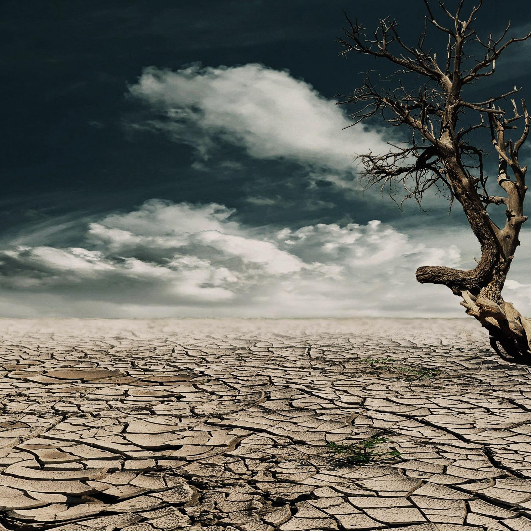 klimat, torka, bortom, fossilsamhället, 2053
