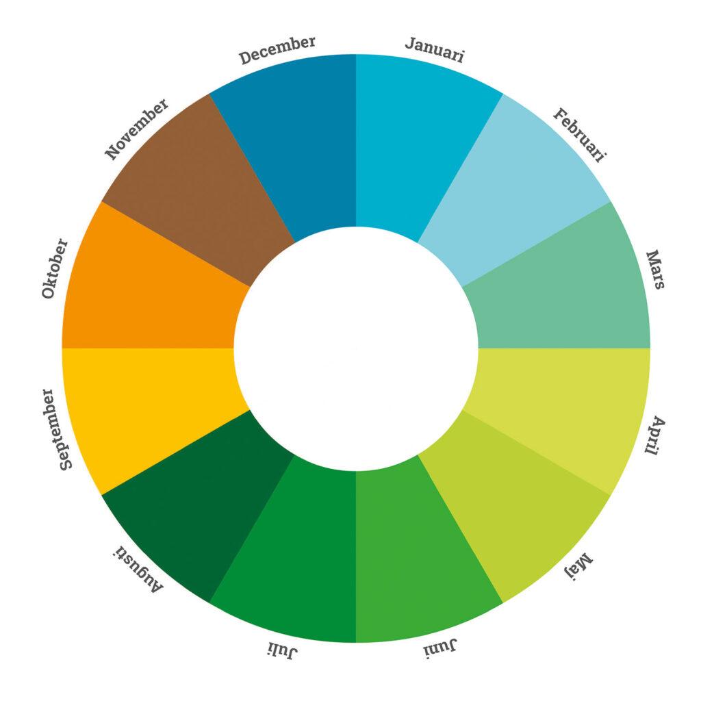 årshjul, skolträdgård, hjul