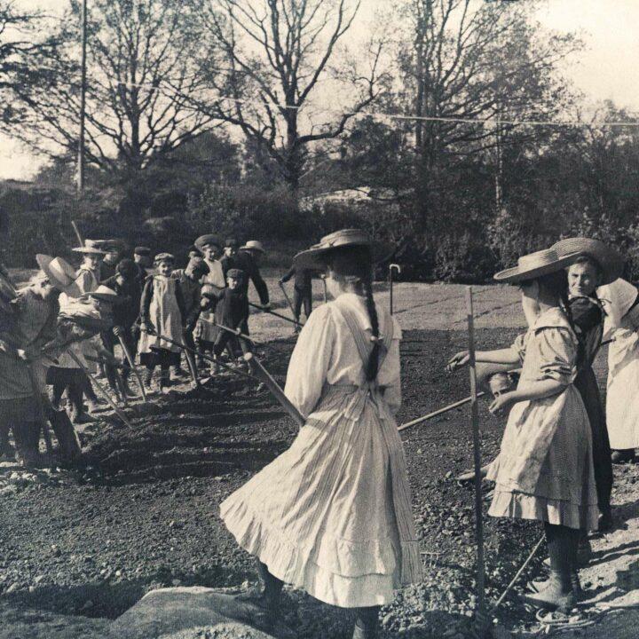 skolträdgård, skolträdgården, åtvidaberg, 1910, odling