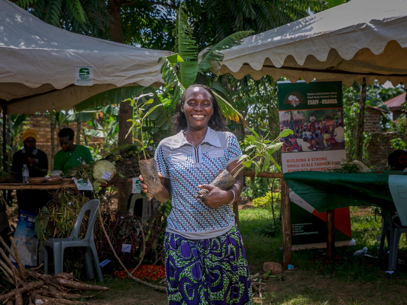 färgad,kvinna,växter,green, action,week, miljövänliga veckan