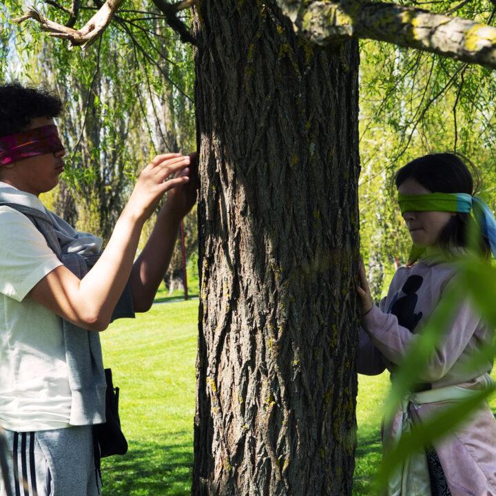 Skarpatorpsskolan, skola, barn, tröskelövning, gillanaturen, upptäckaträd, Upptäckträd