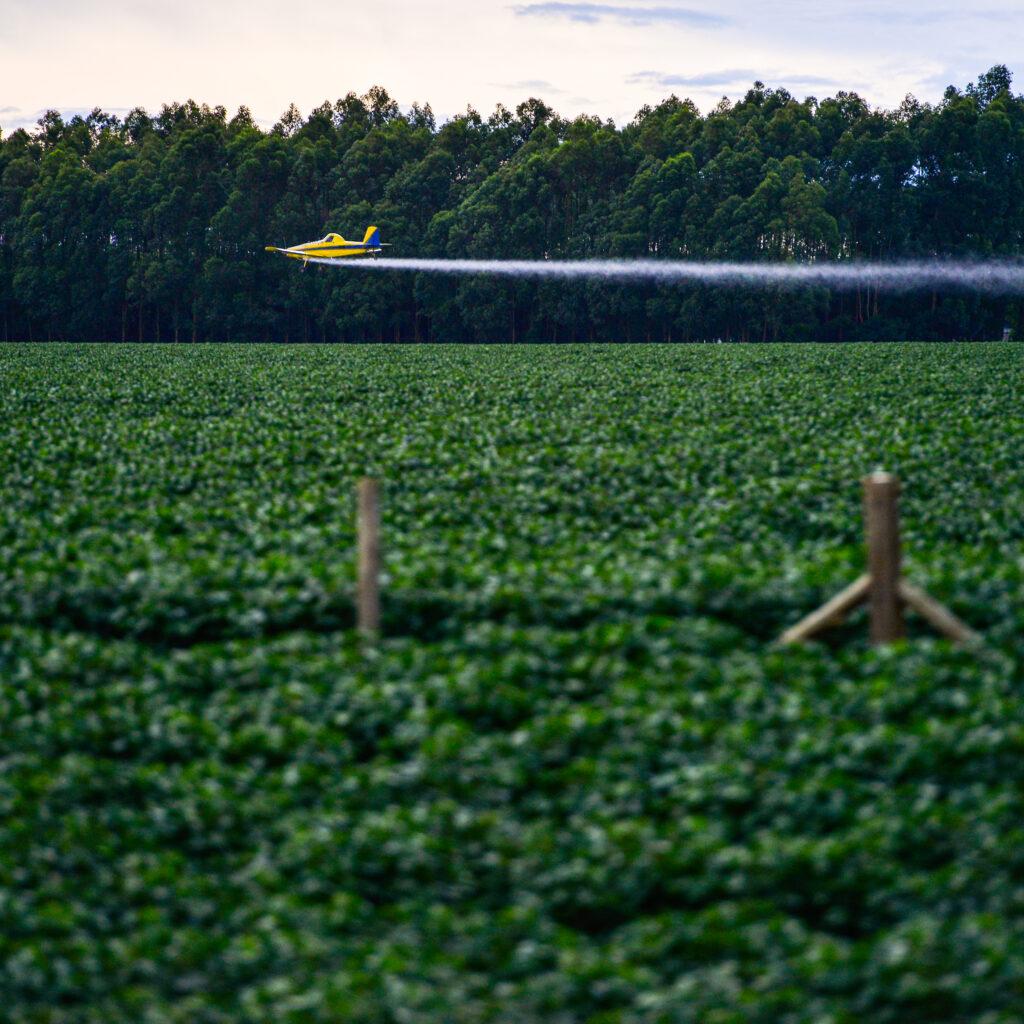 Flygplan, Soja, Brasilien, Bekämpningsmedel,  Mato Grosso, Plantering, Odling, Jordbruk