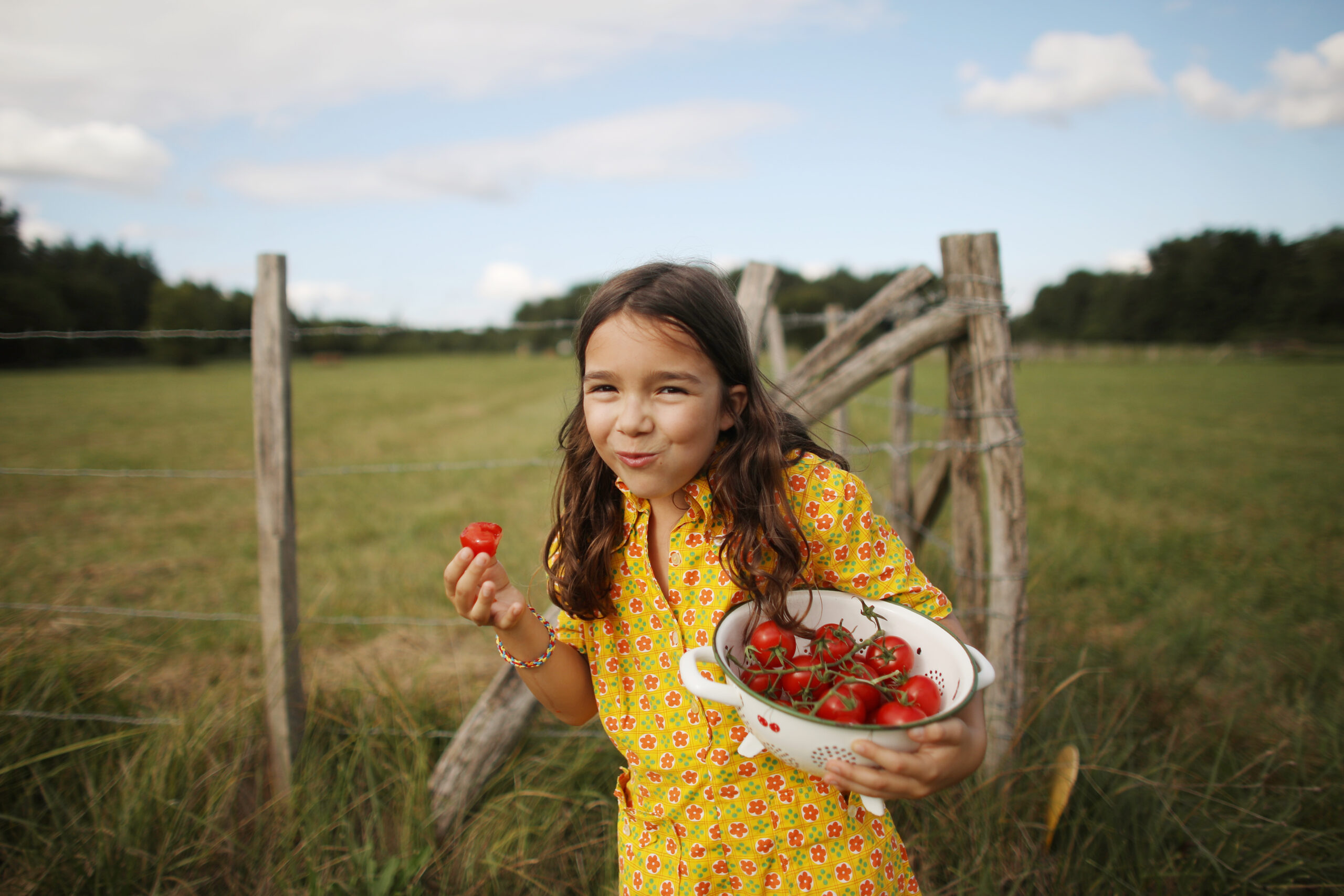 Tjej, tomater, landskap, gräs, staket, träd, natur, ekologisk, röd, himmel, moln, blå, mat