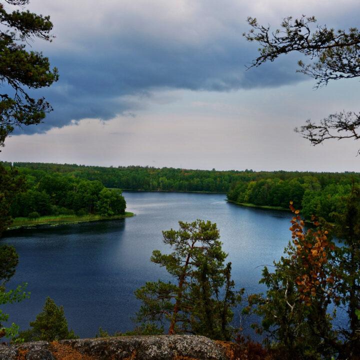 utsikt, ostkustleden, småland, skog, sjö