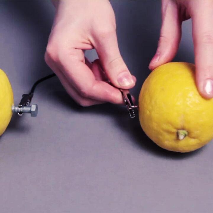 citronbatteriet, experiment