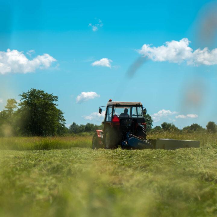 grön, fält, traktor, himmel, blå, moln, träd.