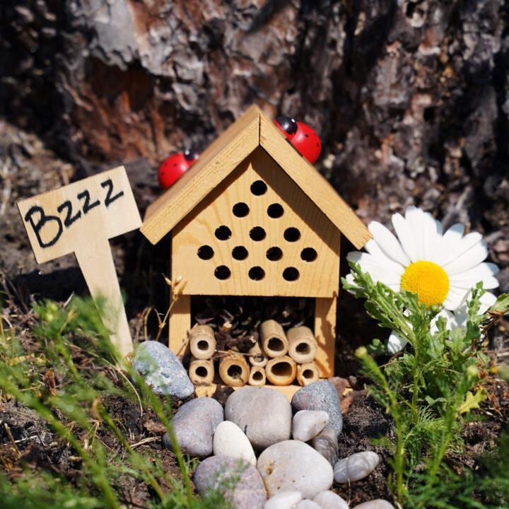 humlebo, bihotell, pollinatörer, humla, bin, biologiskmångfald, gillanaturen
