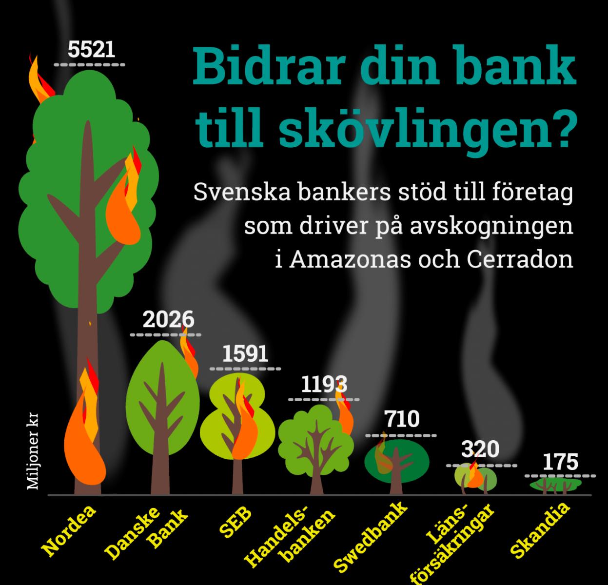 Amazonas, infografik, Fair finance Guide, färgstark